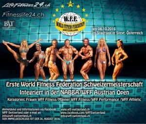 Schweizermeisterschaft Flyer 2016